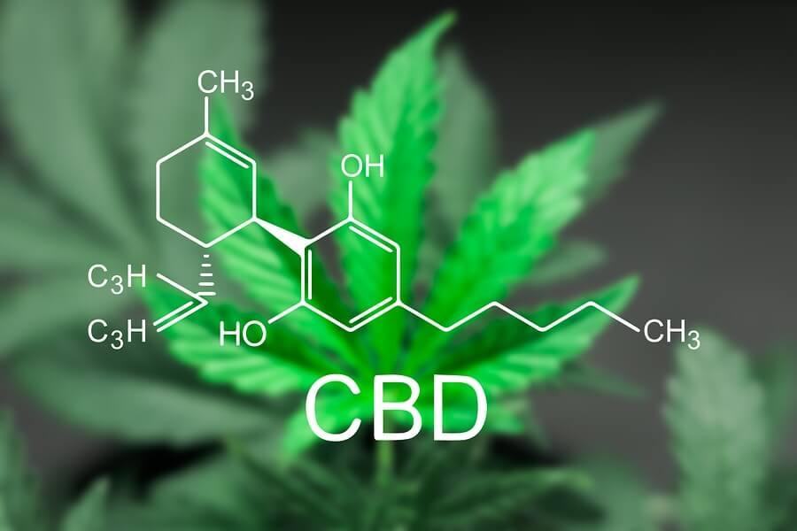 CBD właściwości i potencjał terapeutyczny kannabidiolu